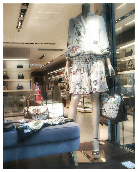 Gucci Hamburg, Shau- Fenster, Flowers, Prints, Flores, Tendencias Gucci
