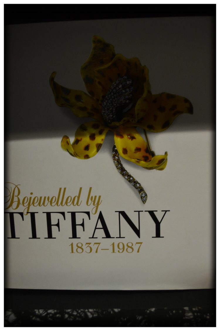 Tifany Buch- Accessorie- Mariposa Fashion Blog- Lesertipp
